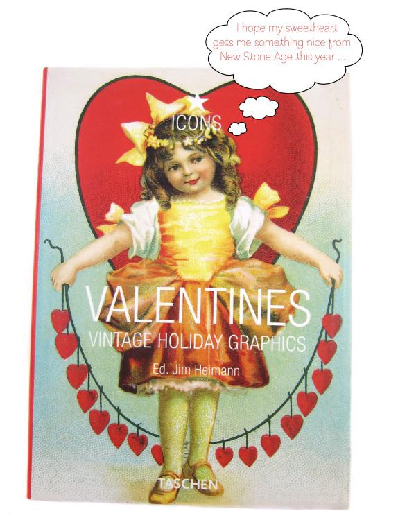 nsa valentines book